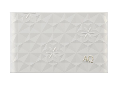 AQ POWDER FOUNDATION CASE